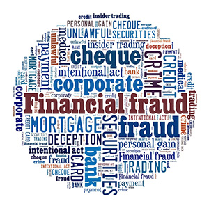 Financial Fraud Circle